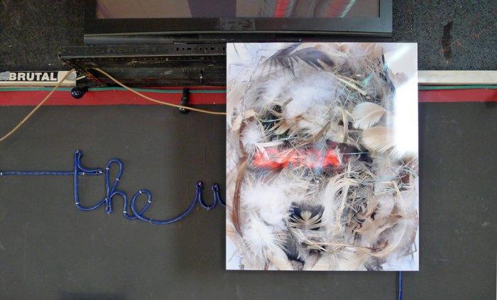 Imre Nagy, Antistatic Plastic, Amselnest, Foto, historischer Rahmen