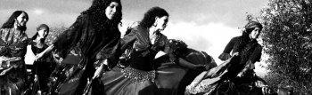 Bild zu Balkan Gypsy Party